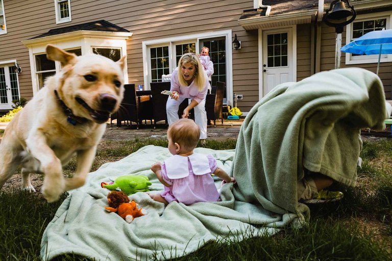 family handles chaos in the backyard as the dog runs away with the baby's toy.